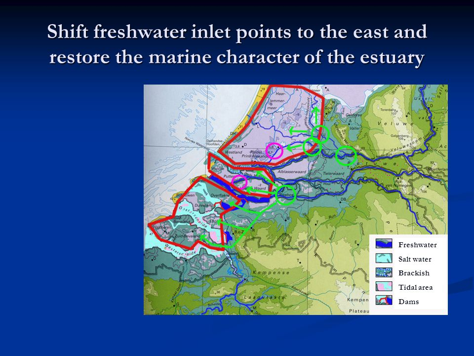 Shift freshwater inlet points to the east and restore the marine character of the estuary Freshwater Salt water Brackish Tidal area Dams