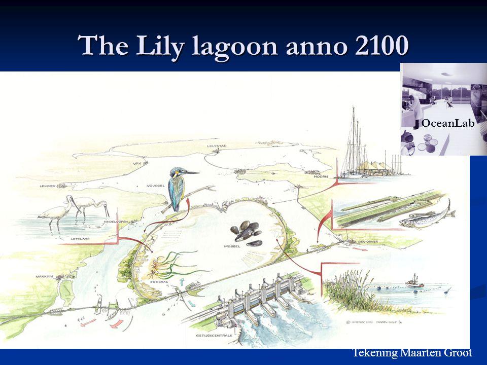 The Lily lagoon anno 2100 Tekening Maarten Groot OceanLab