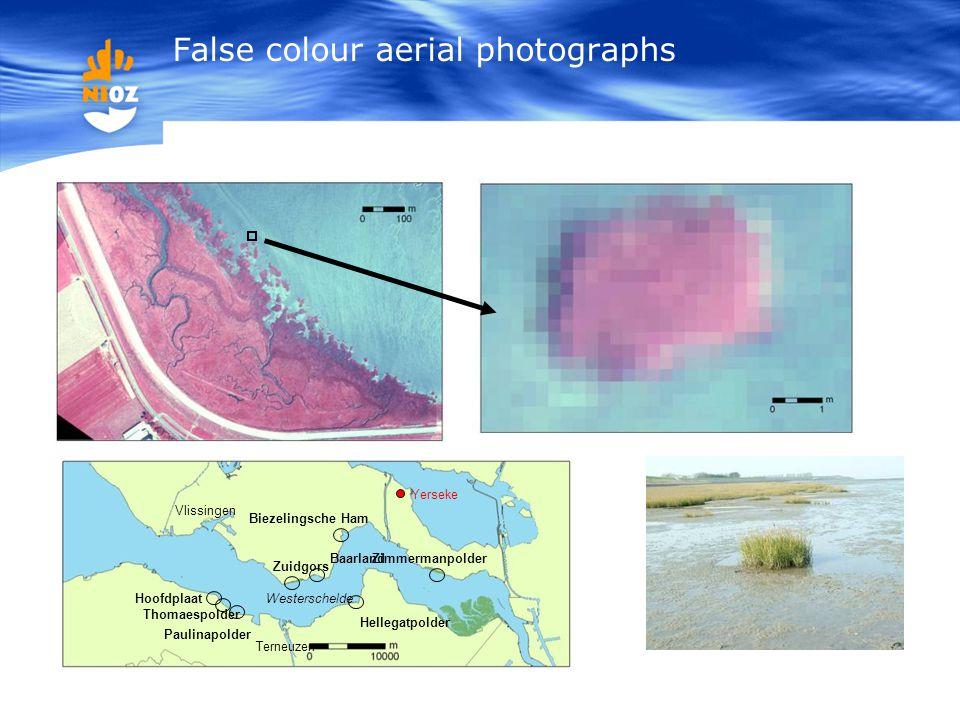 False colour aerial photographs Hoofdplaat Thomaespolder Paulinapolder Zuidgors Hellegatpolder Biezelingsche Ham ZimmermanpolderBaarland Westerschelde