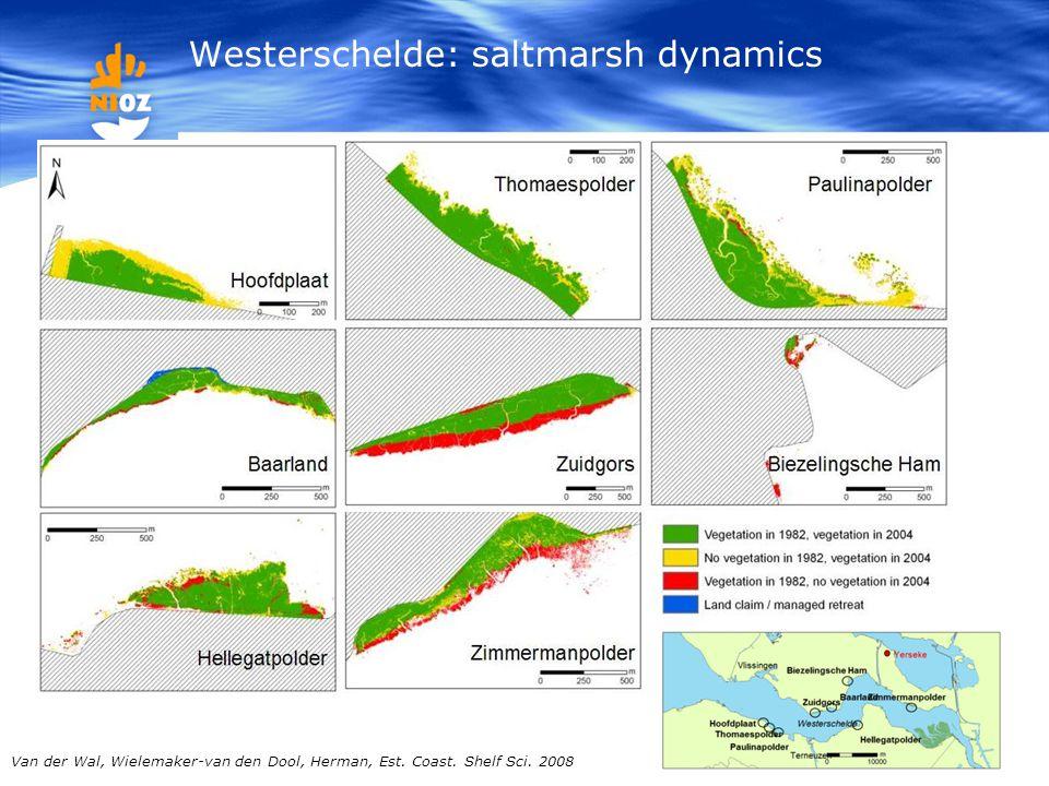 Van der Wal, Wielemaker-van den Dool, Herman, Est. Coast. Shelf Sci. 2008 Westerschelde: saltmarsh dynamics