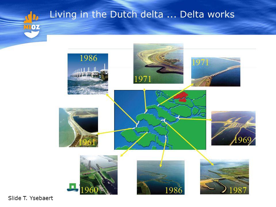 Living in the Dutch delta... Delta works 5 Slide T. Ysebaert