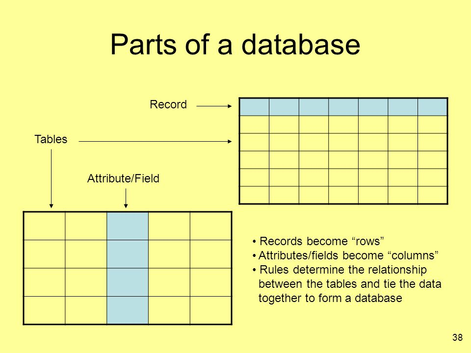 """38 Parts of a database Record Attribute/Field Tables Records become """"rows"""" Attributes/fields become """"columns"""" Rules determine the relationship between"""