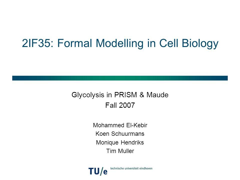 Model checking in PRISM  Modal formulas: P=.[ETHANOL=0 U CARBO>=1] P>0.8 [ATP>0 U ETHANOL>3] P=.