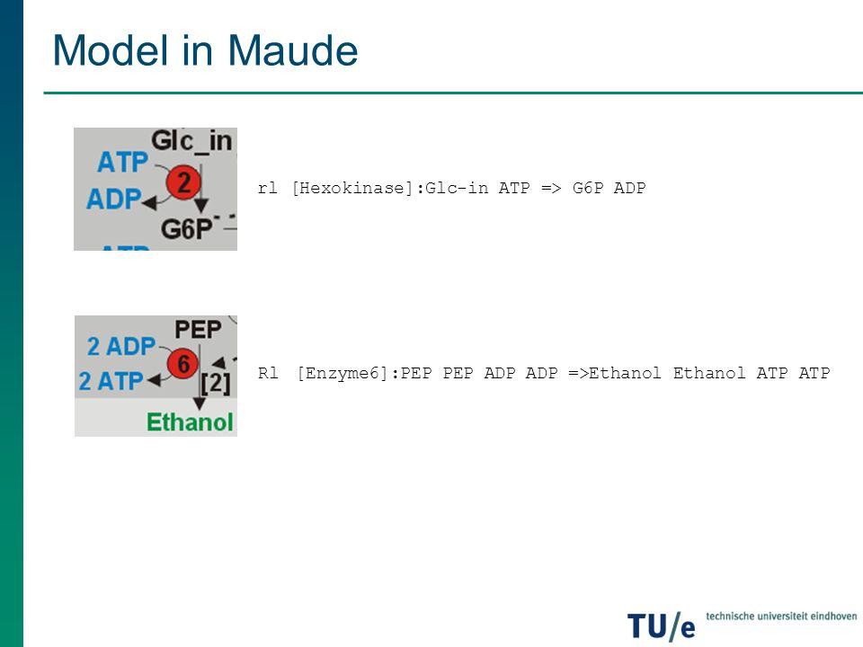 Model in Maude rl [Hexokinase]:Glc-in ATP => G6P ADP Rl [Enzyme6]:PEP PEP ADP ADP =>Ethanol Ethanol ATP ATP