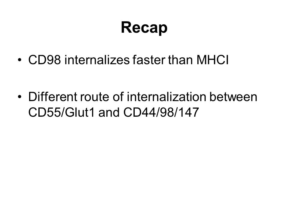 Recap CD98 internalizes faster than MHCI Different route of internalization between CD55/Glut1 and CD44/98/147