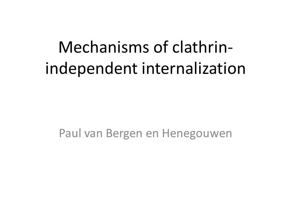 Mechanisms of clathrin- independent internalization Paul van Bergen en Henegouwen