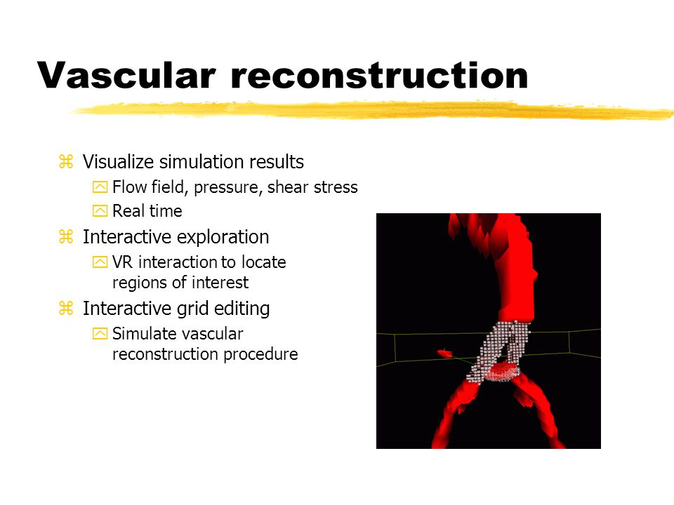 Vascular reconstruction zVisualize simulation results yFlow field, pressure, shear stress yReal time zInteractive exploration yVR interaction to locate regions of interest zInteractive grid editing ySimulate vascular reconstruction procedure