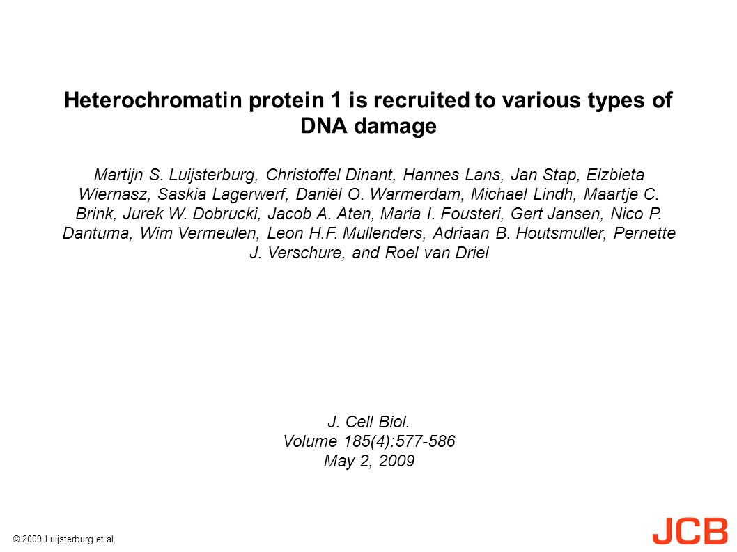 Heterochromatin protein 1 is recruited to various types of DNA damage Martijn S.