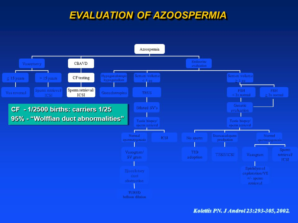 EVALUATION OF AZOOSPERMIA Kolettis PN. J Androl 23:293-305, 2002.