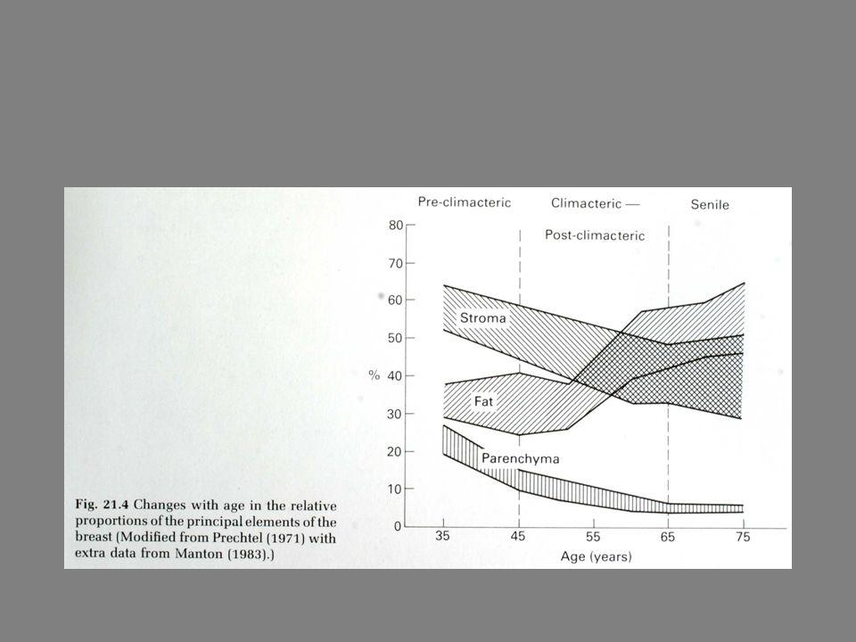 Fyto-oestrogenen en de borst - mogelijks gunstig effect op de preventie of het verloop van borstkanker - werkingsmechanisme : onbekend - 2003 : nog geen definitieve uitspraak hieromtrent