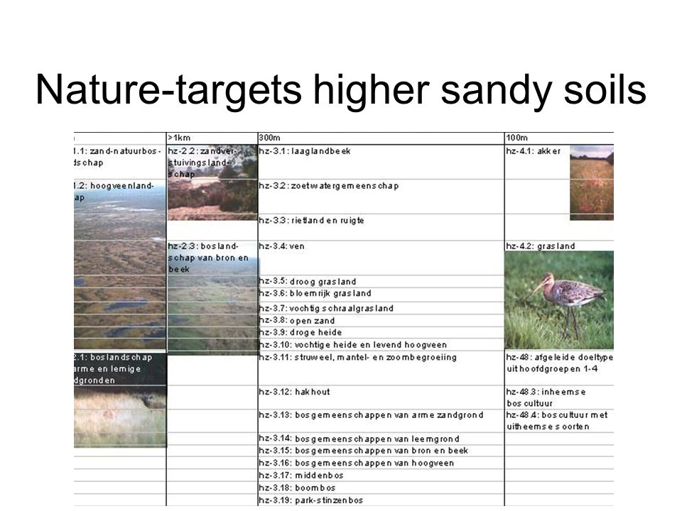 Nature-targets higher sandy soils