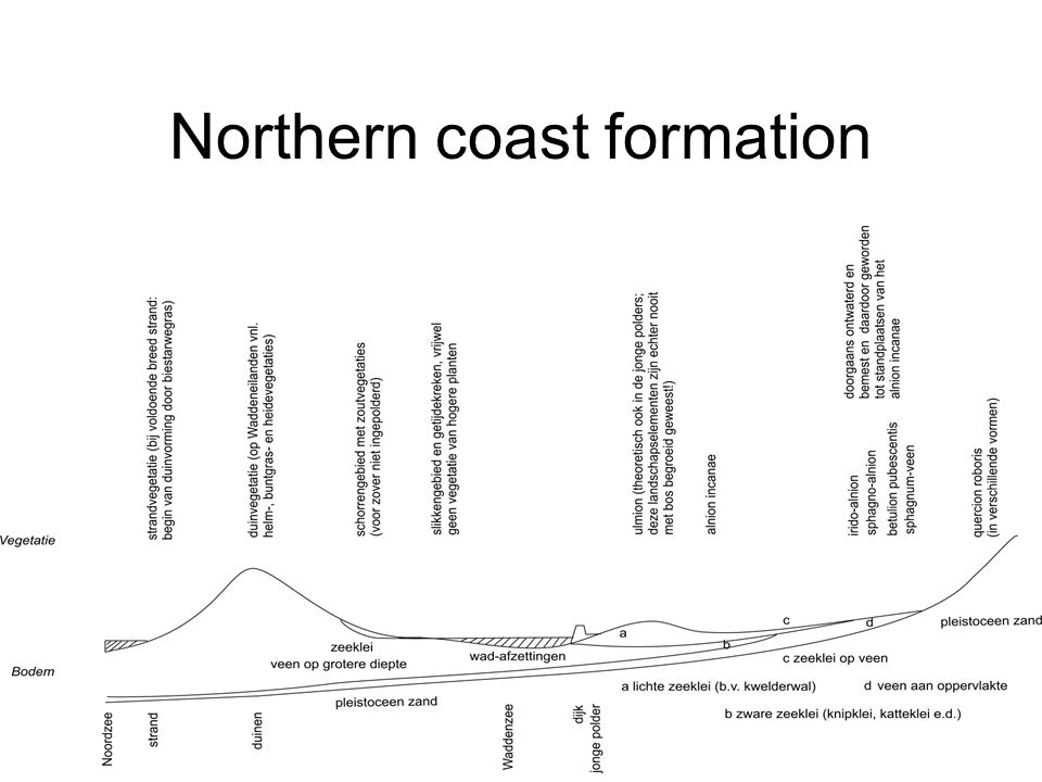 Northern coast formation
