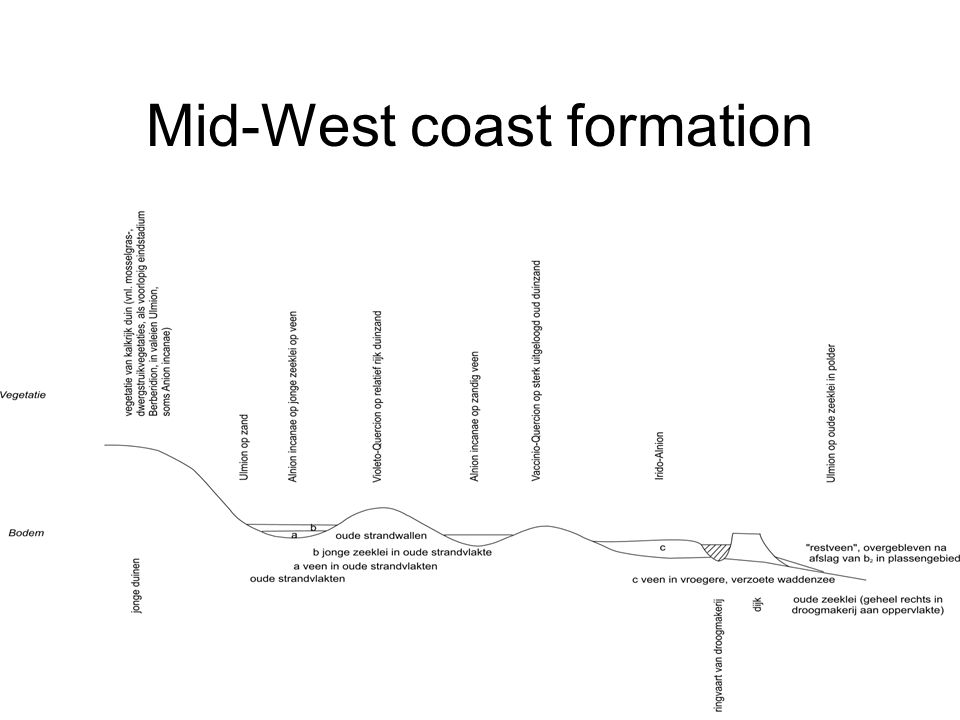 Mid-West coast formation