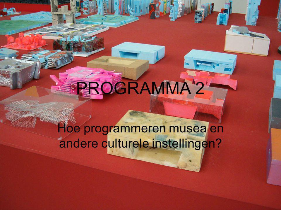 PROGRAMMA 2 Hoe programmeren musea en andere culturele instellingen