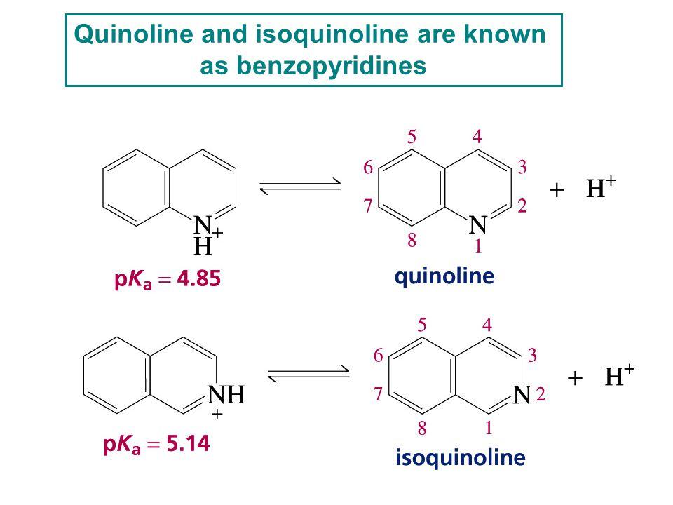 Quinoline and isoquinoline are known as benzopyridines