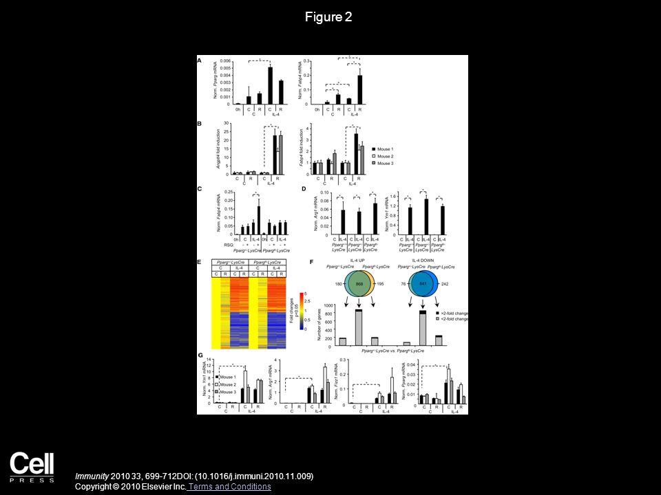 Figure 3 Immunity 2010 33, 699-712DOI: (10.1016/j.immuni.2010.11.009) Copyright © 2010 Elsevier Inc.