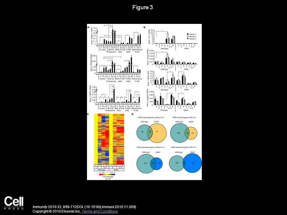 Figure 4 Immunity 2010 33, 699-712DOI: (10.1016/j.immuni.2010.11.009) Copyright © 2010 Elsevier Inc.