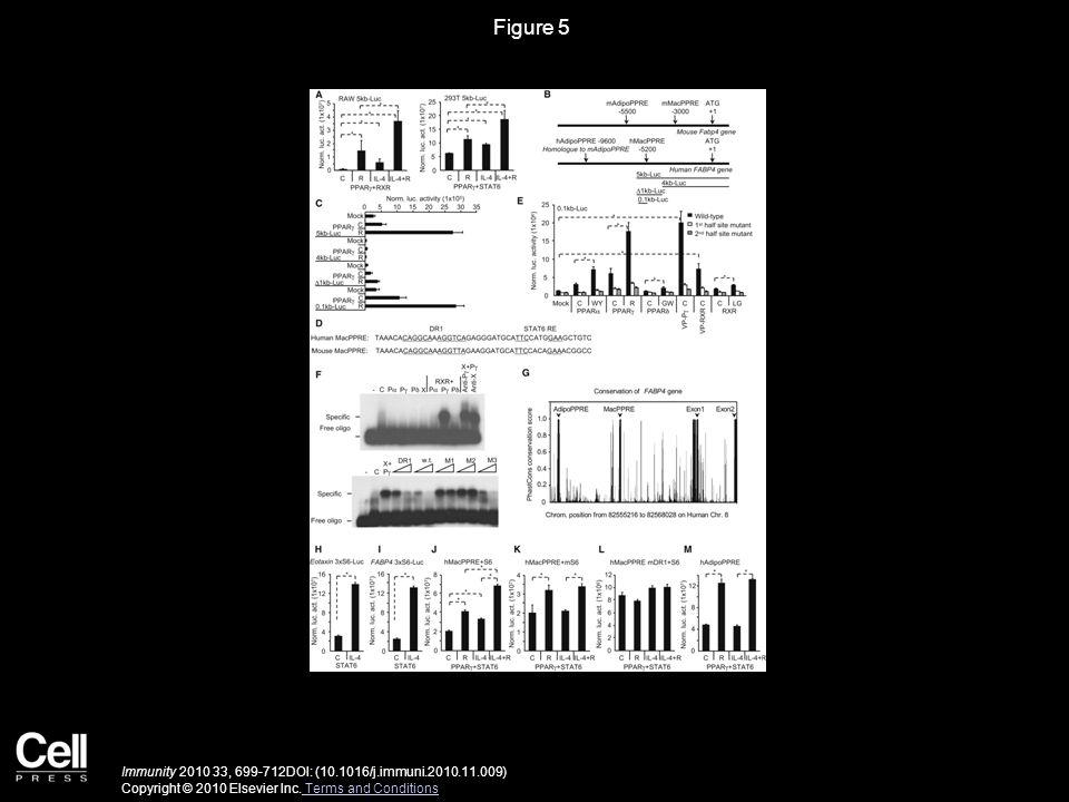 Figure 6 Immunity 2010 33, 699-712DOI: (10.1016/j.immuni.2010.11.009) Copyright © 2010 Elsevier Inc.