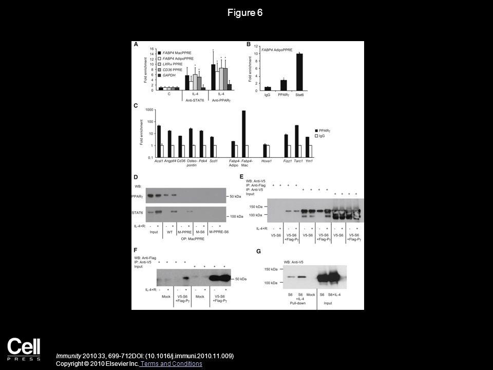 Immunity 2010 33, 699-712DOI: (10.1016/j.immuni.2010.11.009) Copyright © 2010 Elsevier Inc.
