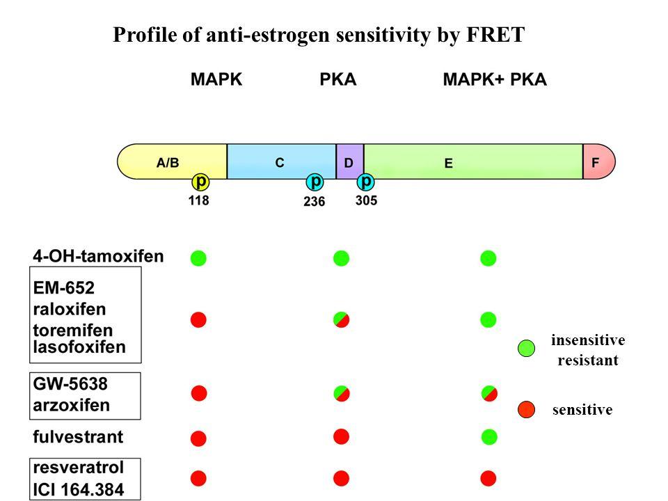 Profile of anti-estrogen sensitivity by FRET sensitive insensitive resistant