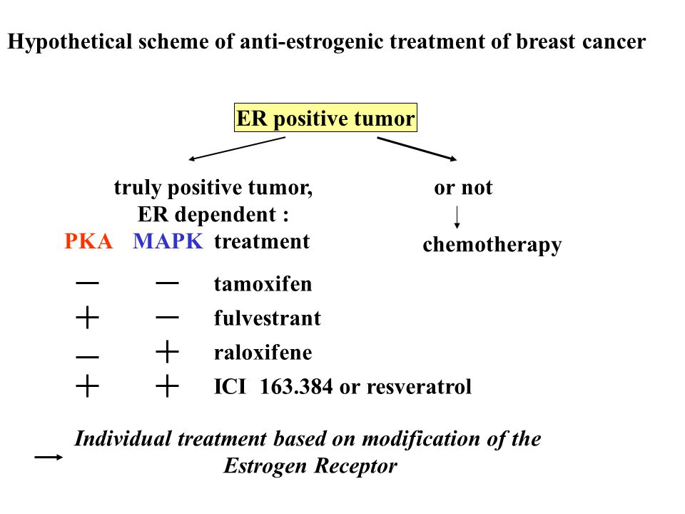 Hypothetical scheme of anti-estrogenic treatment of breast cancer ER positive tumor truly positive tumor, ER dependent : or not chemotherapy PKAMAPK t