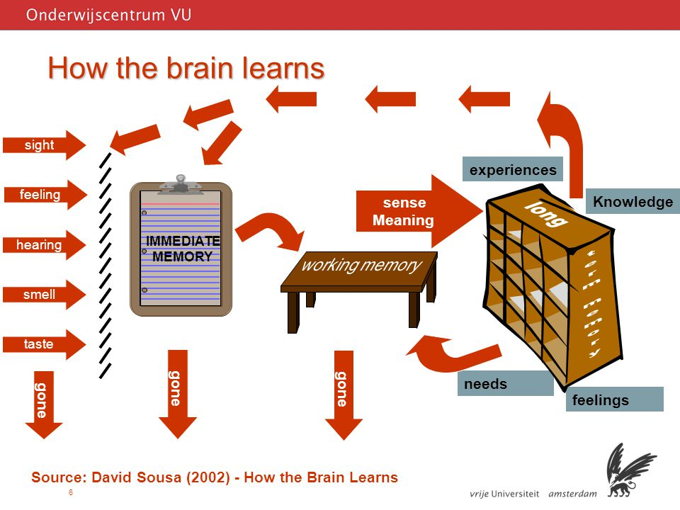 6 How the brain learns Source: David Sousa (2002) - How the Brain Learns feelings needs gone hearing IMMEDIATE MEMORY smell sight feeling taste experiences Knowledge sense Meaning gone