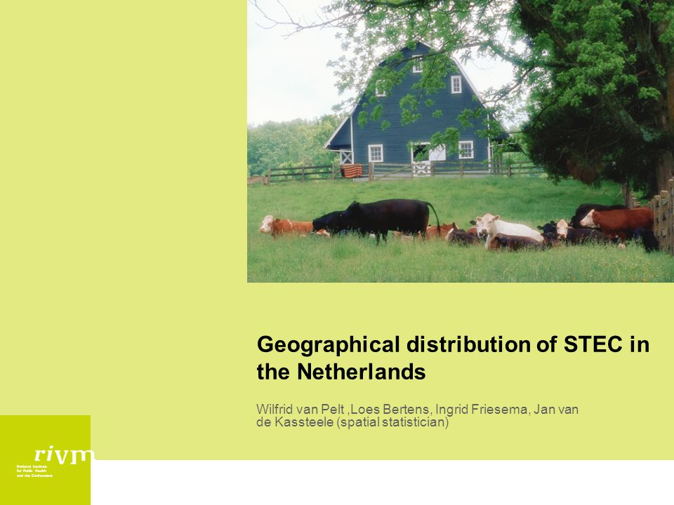 National Institute for Public Health and the Environment Geographical distribution of STEC in the Netherlands Wilfrid van Pelt,Loes Bertens, Ingrid Friesema, Jan van de Kassteele (spatial statistician)