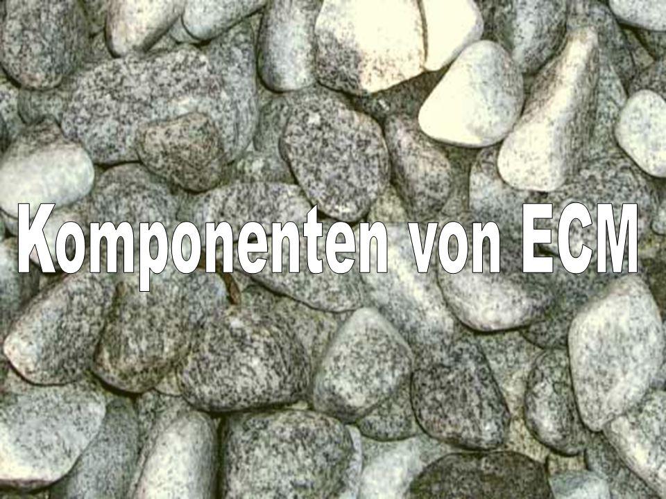 13 Coextant Enterprise Content Management: Status Quo und Zukunft Dr.