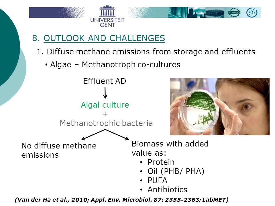 8. OUTLOOK AND CHALLENGES (Van der Ha et al., 2010; Appl. Env. Microbiol. 87: 2355-2363; LabMET) 1. Diffuse methane emissions from storage and effluen