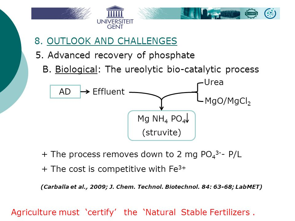B. Biological: The ureolytic bio-catalytic process + The process removes down to 2 mg PO 4 3- - P/L + The cost is competitive with Fe 3+ (Carballa et