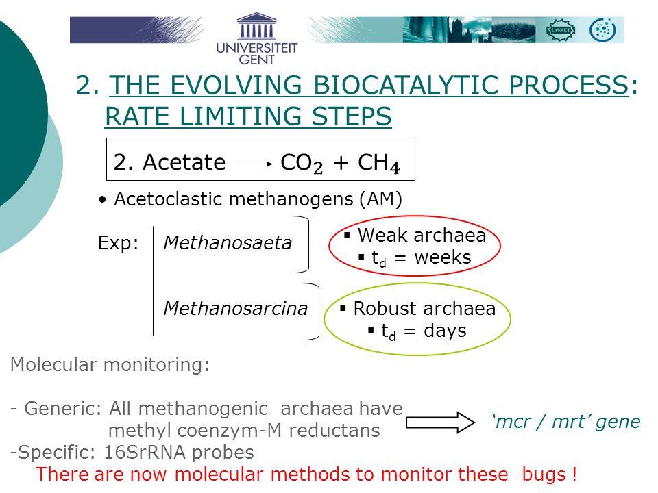 2. THE EVOLVING BIOCATALYTIC PROCESS: RATE LIMITING STEPS 2. Acetate CO ₂ + CH ₄ Acetoclastic methanogens (AM) Exp: Methanosaeta Methanosarcina  Weak