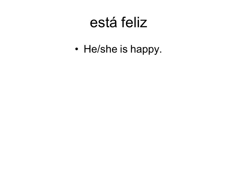 está feliz He/she is happy.