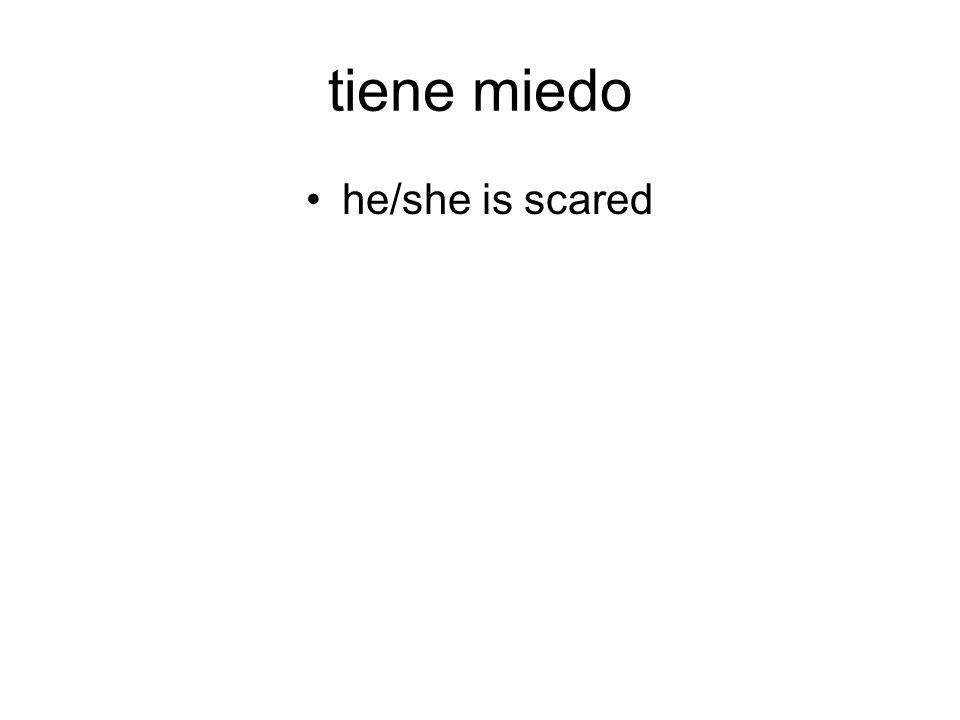tiene miedo he/she is scared