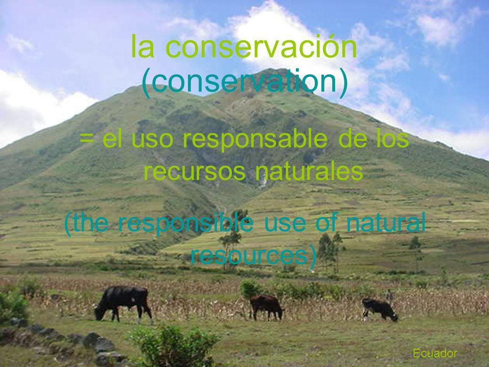 la conservación = el uso responsable de los recursos naturales (conservation) (the responsible use of natural resources) Ecuador