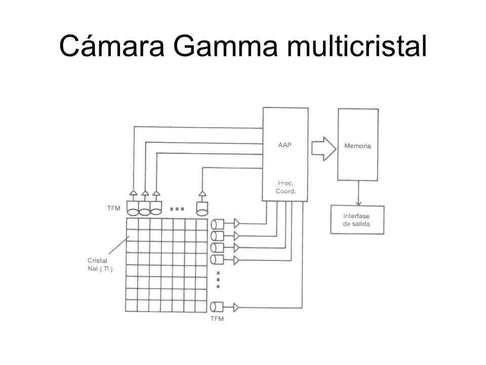 Cámara Gamma multicristal