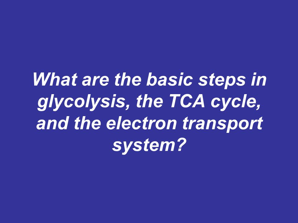 What are the basic steps in glycolysis, the TCA cycle, and the electron transport system?