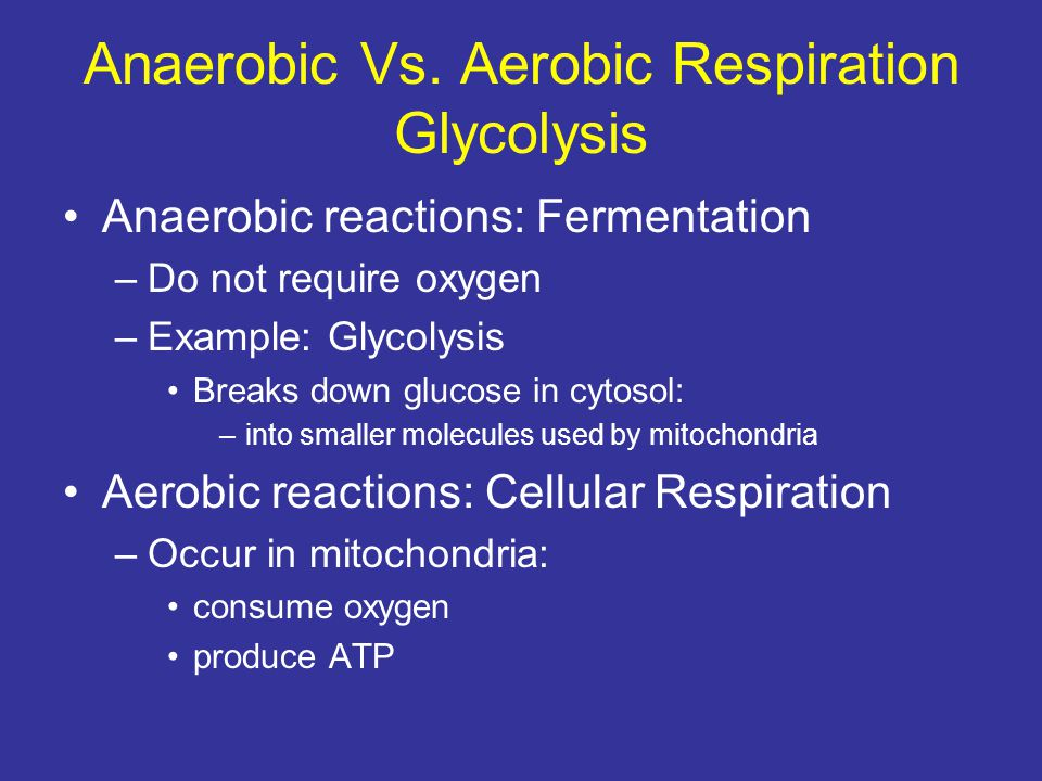 Anaerobic Vs. Aerobic Respiration Glycolysis Anaerobic reactions: Fermentation –Do not require oxygen –Example: Glycolysis Breaks down glucose in cyto