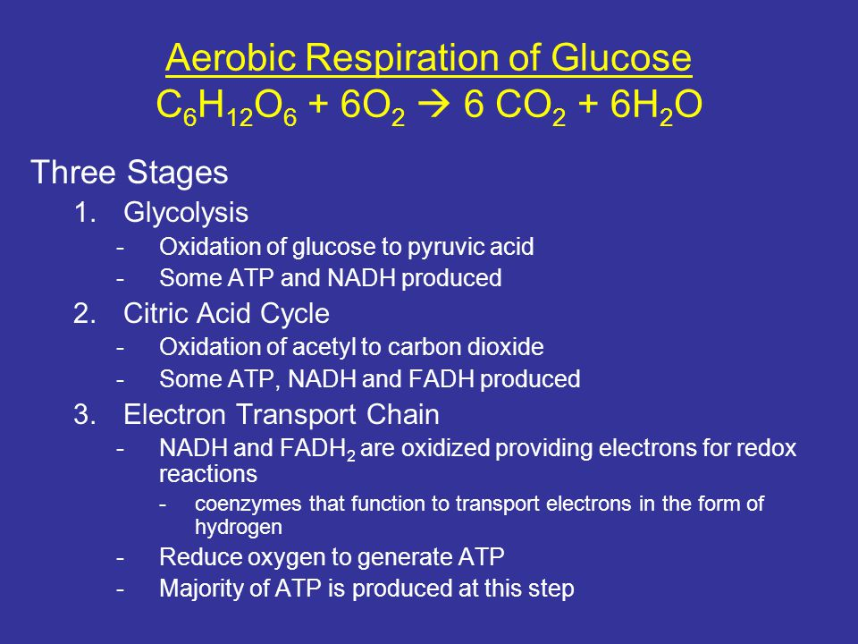 Aerobic Respiration of Glucose C 6 H 12 O 6 + 6O 2  6 CO 2 + 6H 2 O Three Stages 1.Glycolysis -Oxidation of glucose to pyruvic acid -Some ATP and NAD