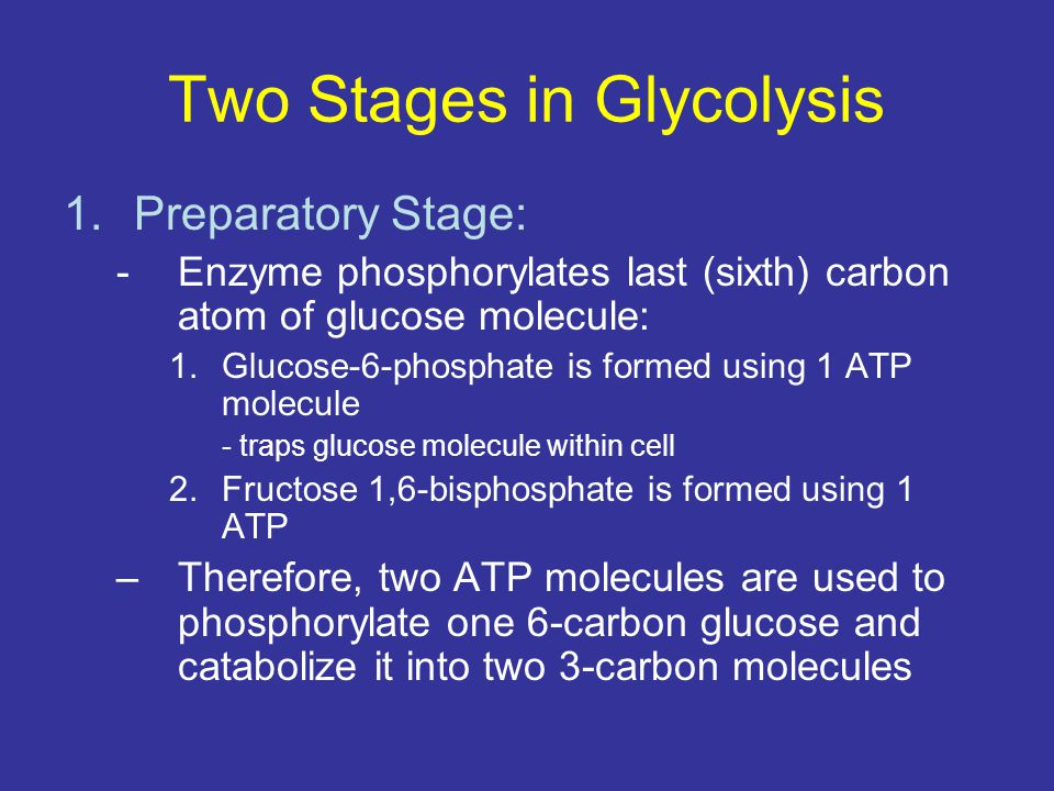 Two Stages in Glycolysis 1.Preparatory Stage: -Enzyme phosphorylates last (sixth) carbon atom of glucose molecule: 1.Glucose-6-phosphate is formed usi