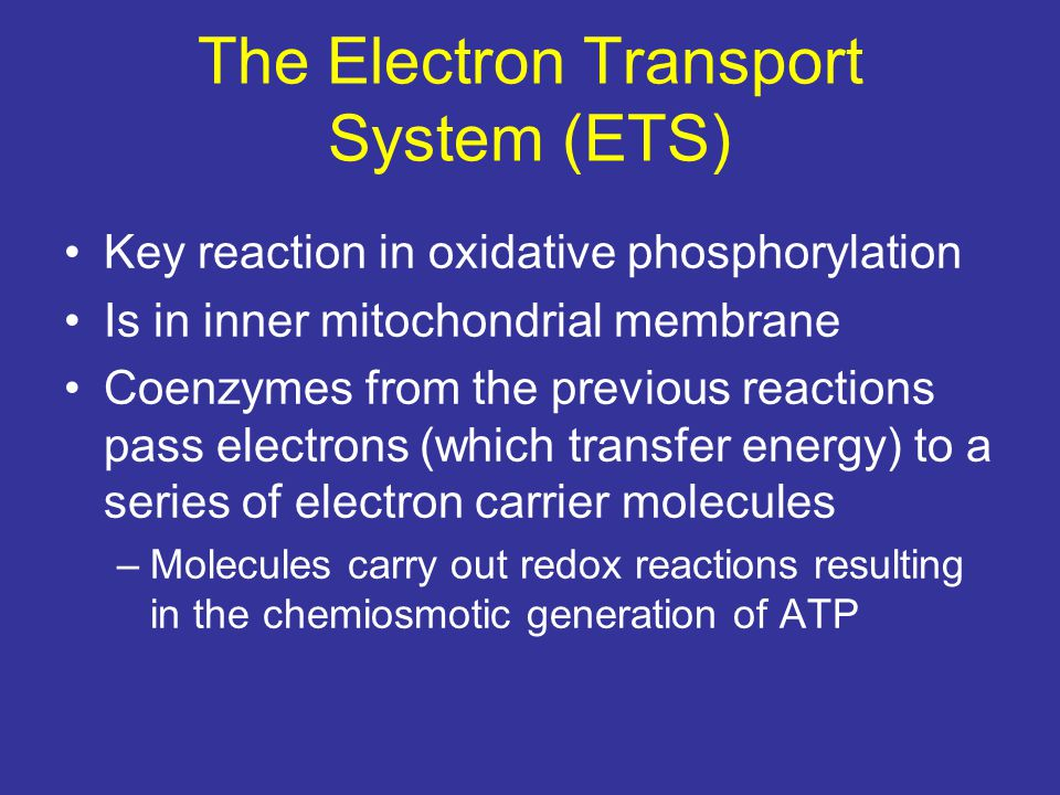 The Electron Transport System (ETS) Key reaction in oxidative phosphorylation Is in inner mitochondrial membrane Coenzymes from the previous reactions