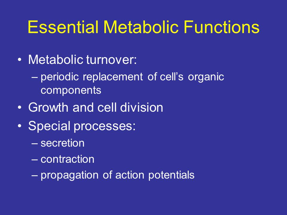 Essential Metabolic Functions Metabolic turnover: –periodic replacement of cell's organic components Growth and cell division Special processes: –secr
