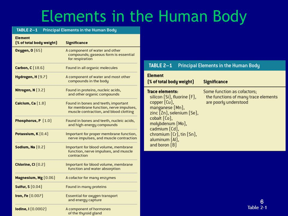 67 Which lipids would you find in human cell membranes.