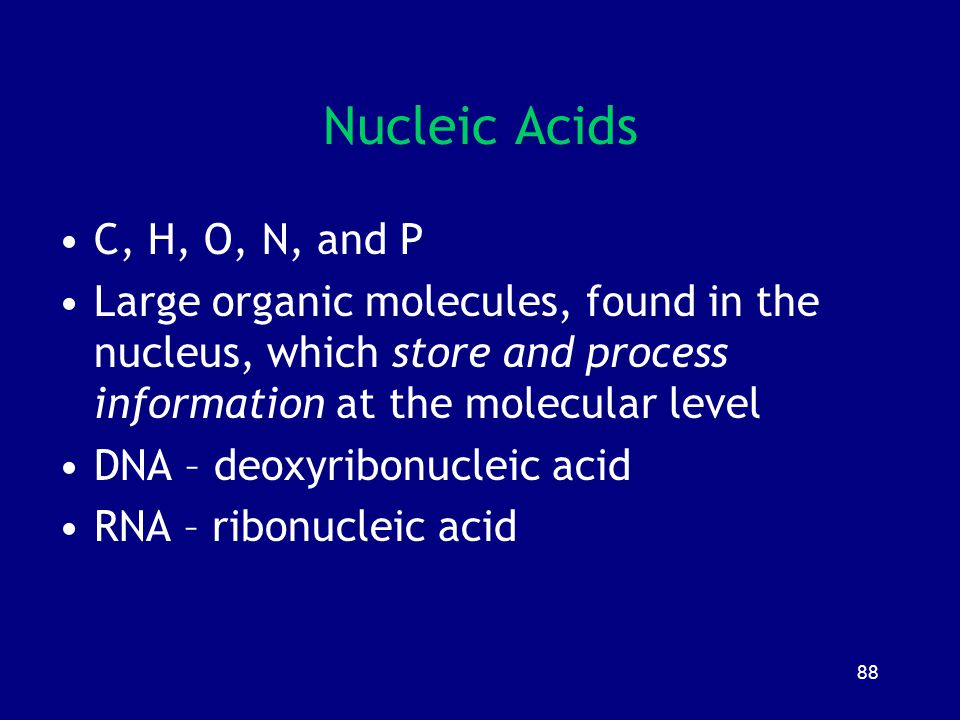88 Nucleic Acids C, H, O, N, and P Large organic molecules, found in the nucleus, which store and process information at the molecular level DNA – deo