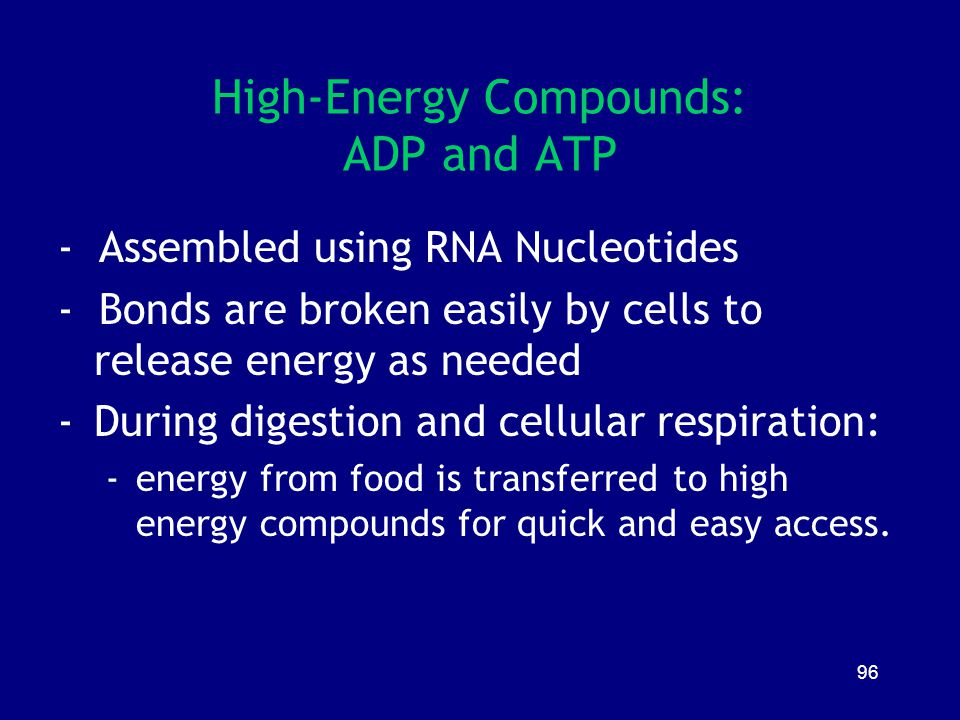 96 High-Energy Compounds: ADP and ATP - Assembled using RNA Nucleotides - Bonds are broken easily by cells to release energy as needed -During digesti
