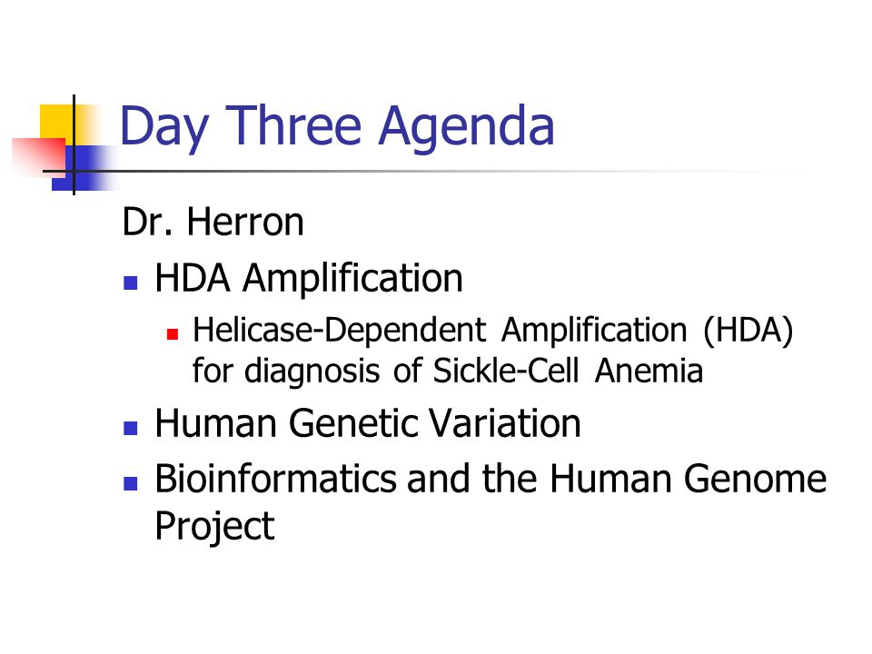 Day Three Agenda Dr. Herron HDA Amplification Helicase-Dependent Amplification (HDA) for diagnosis of Sickle-Cell Anemia Human Genetic Variation Bioin