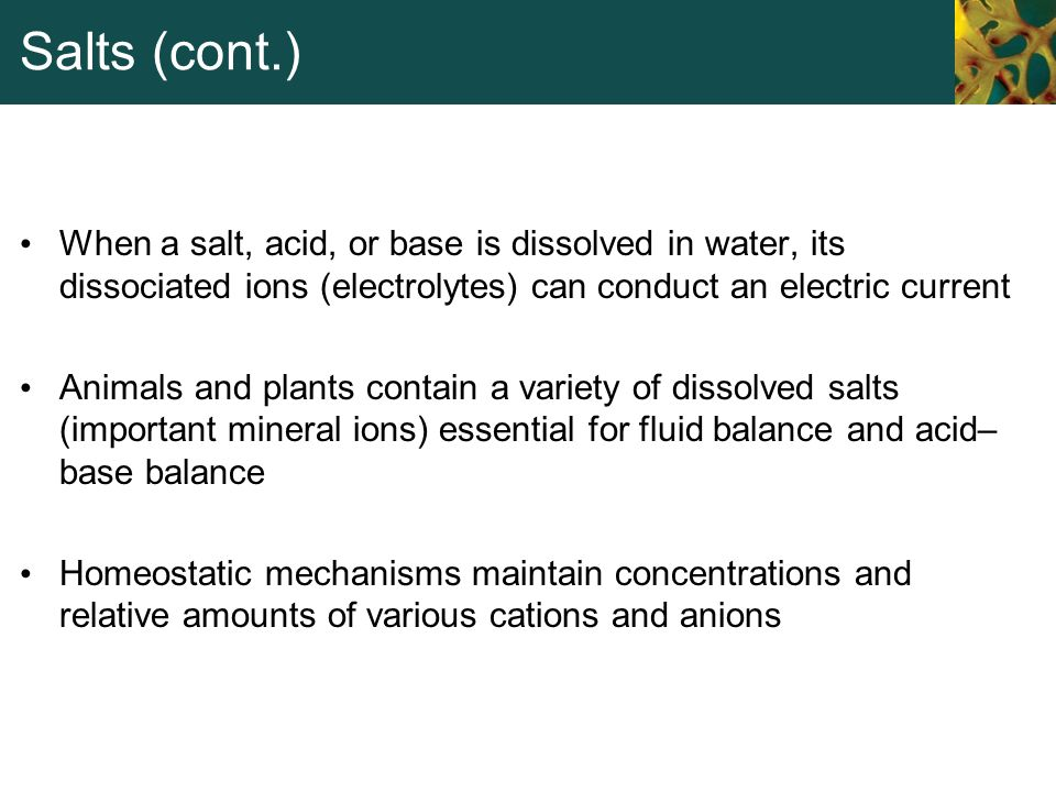 Salts (cont.) When a salt, acid, or base is dissolved in water, its dissociated ions (electrolytes) can conduct an electric current Animals and plants