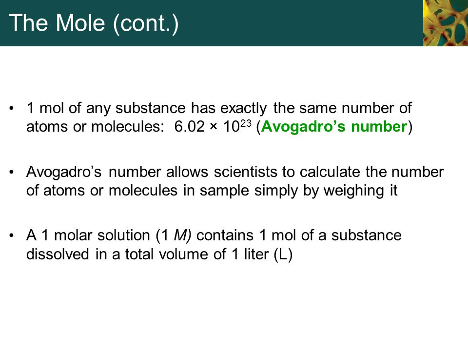 The Mole (cont.) 1 mol of any substance has exactly the same number of atoms or molecules: 6.02 × 10 23 (Avogadro's number) Avogadro's number allows s
