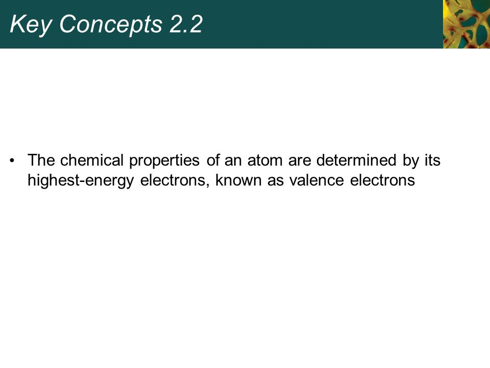 Key Concepts 2.2 The chemical properties of an atom are determined by its highest-energy electrons, known as valence electrons