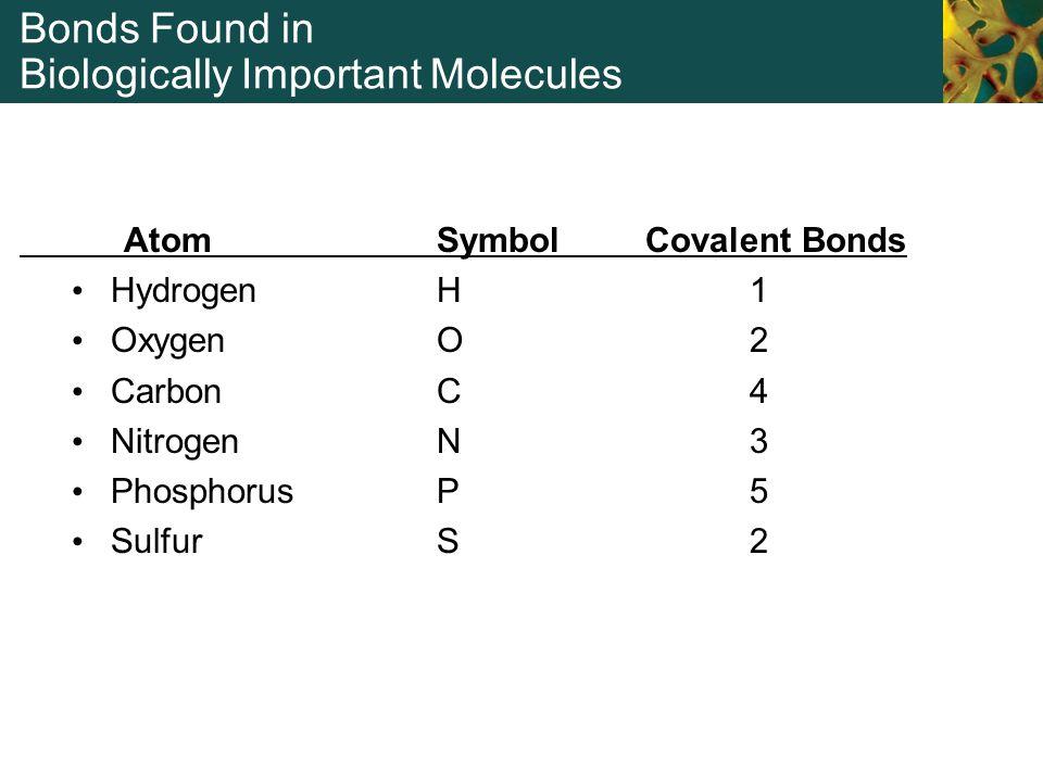 Bonds Found in Biologically Important Molecules Atom Symbol Covalent Bonds Hydrogen H 1 Oxygen O2 Carbon C 4 Nitrogen N 3 Phosphorus P 5 Sulfur S 2