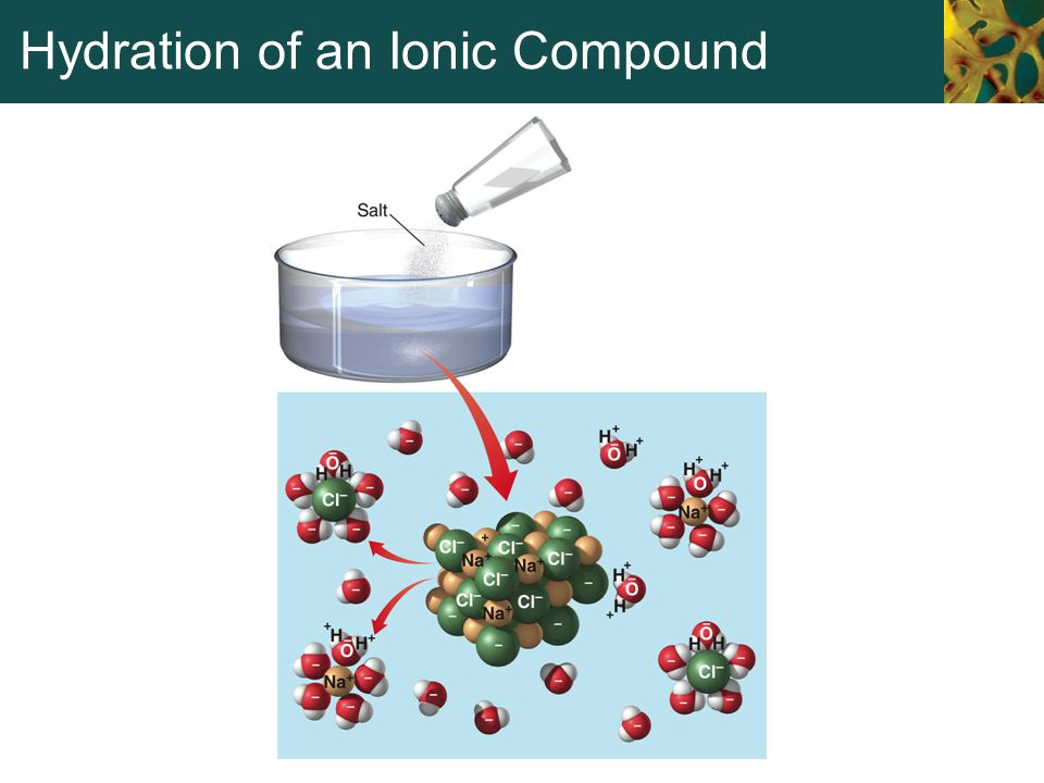 Hydration of an Ionic Compound